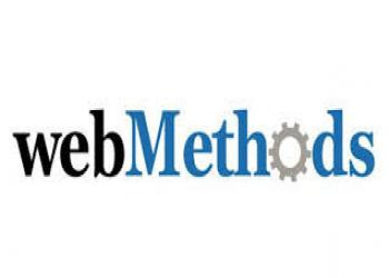 Consultants webMethods